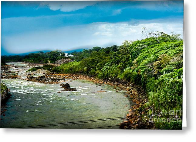 Biological Greeting Cards - Tortuguero River Greeting Card by Gary Keesler
