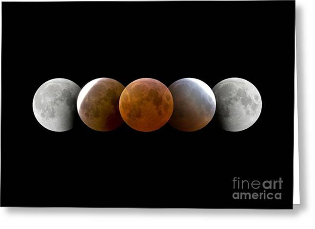 March Moon Greeting Cards - Total Lunar Eclipse, Montage Image Greeting Card by Dr. Juerg Alean