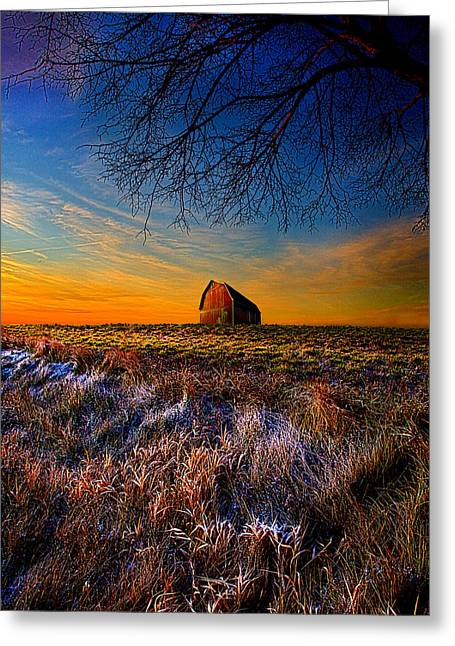 Geographic Greeting Cards - Touched Greeting Card by Phil Koch