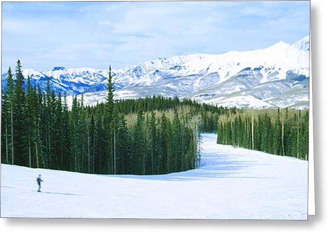 Telluride Greeting Cards - Tourists Skiing On A Snow Covered Greeting Card by Panoramic Images