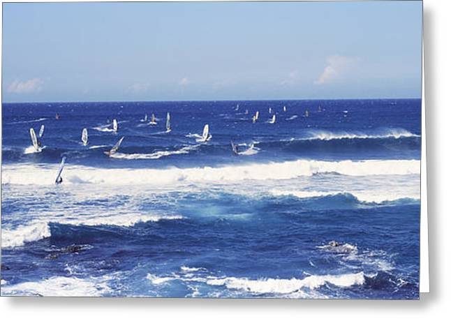 On The Beach Greeting Cards - Tourists Windsurfing, Hookipa Beach Greeting Card by Panoramic Images