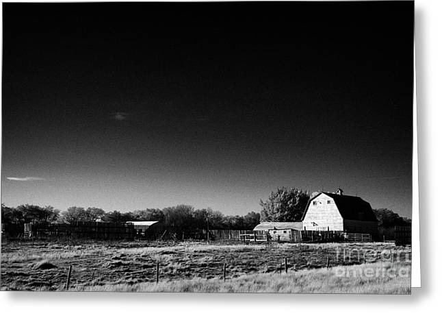 Outbuildings Greeting Cards - traditional Saskatchewan barn on farm in rural Canada Greeting Card by Joe Fox