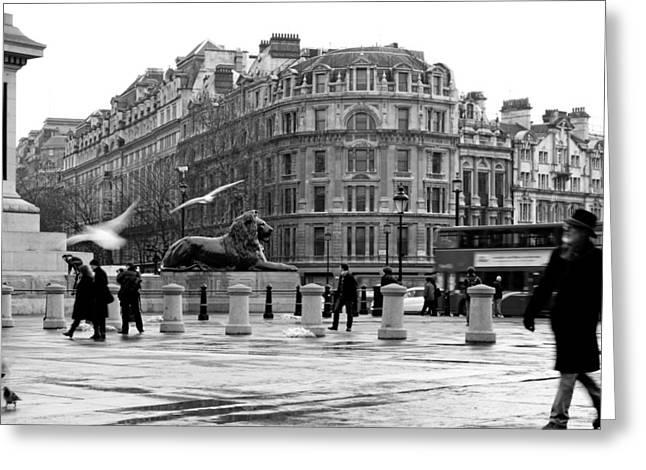 Colin Hogan Greeting Cards - Trafalgar Square - ref 3988 Greeting Card by Colin Hogan