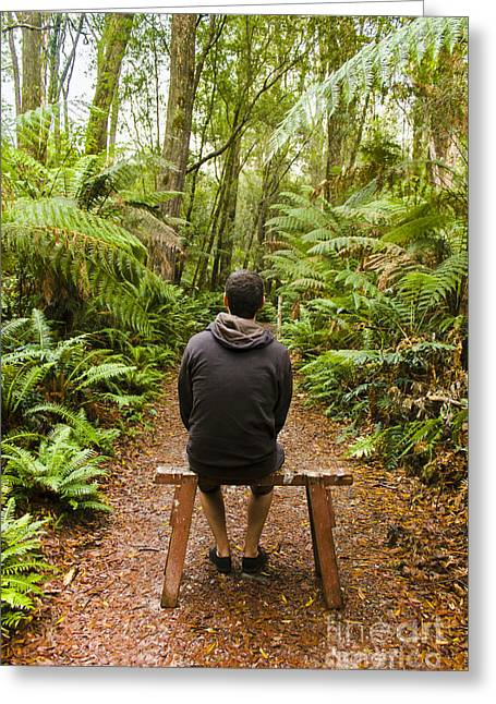 Travel Man Sitting In A Green Lush Fern Forest Greeting Card by Jorgo Photography - Wall Art Gallery