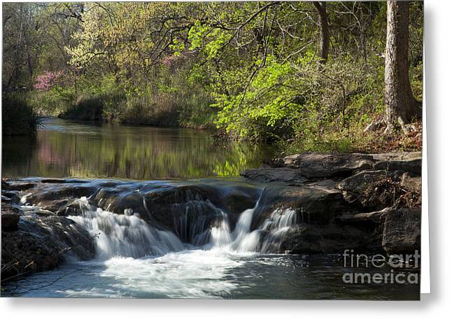Spring Scenes Greeting Cards - Travertine Creek in Spring Greeting Card by Iris Greenwell