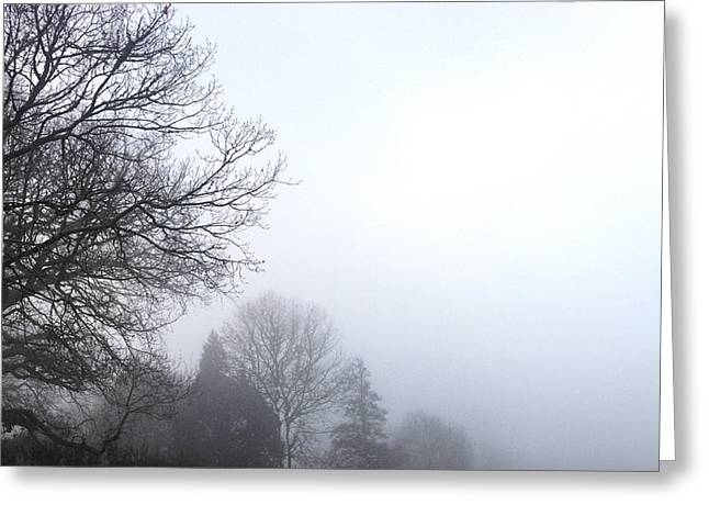 Foggy. Mist Greeting Cards - Tree in fog Greeting Card by Les Cunliffe