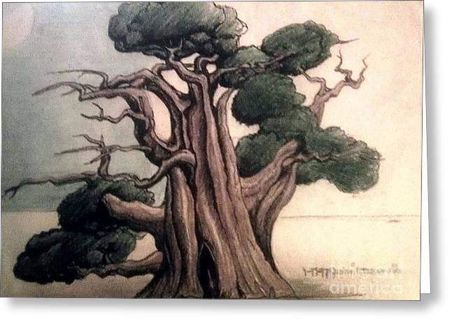 Tree Greeting Card by Justin Moranville