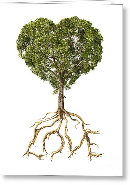 Development Of Life Greeting Cards - Tree With Foliage In The Shape Greeting Card by Leonello Calvetti
