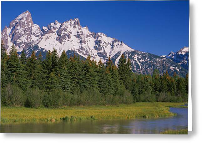 Trees Along A River, Near Schwabachers Greeting Card by Panoramic Images