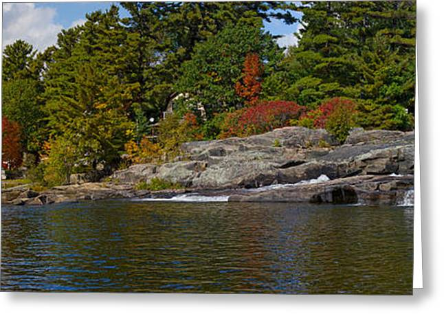 Moon River Greeting Cards - Trees At The Riverside, Moon River Greeting Card by Panoramic Images