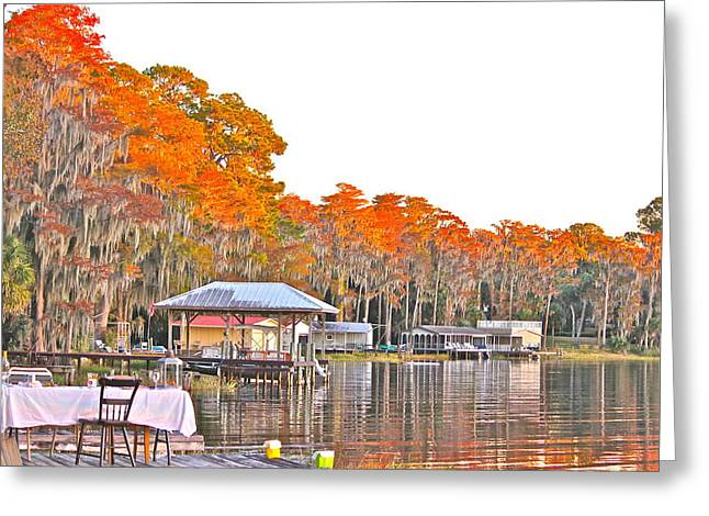 Cyril Maza Greeting Cards - Trees by the Lake Greeting Card by Cyril Maza