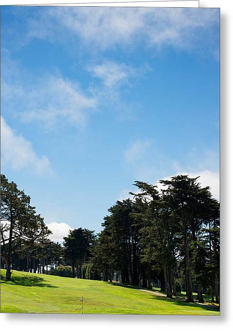 Trees In A Golf Course, Presidio Golf Greeting Card by Panoramic Images