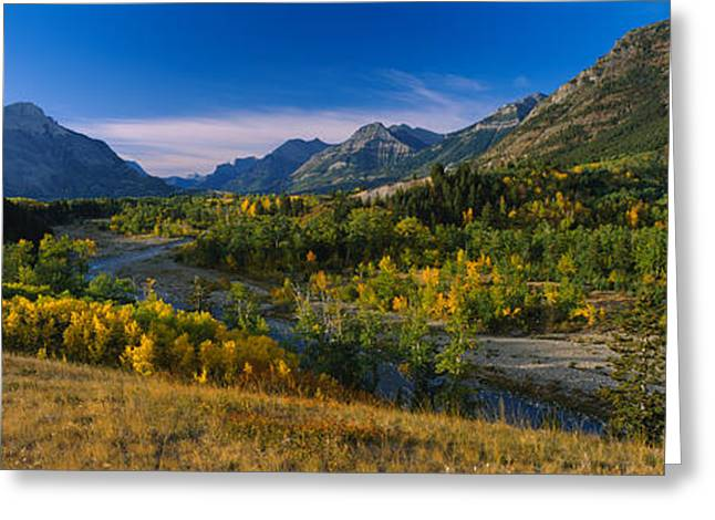 Fall Grass Greeting Cards - Trees In A Valley, Waterton Lakes Greeting Card by Panoramic Images