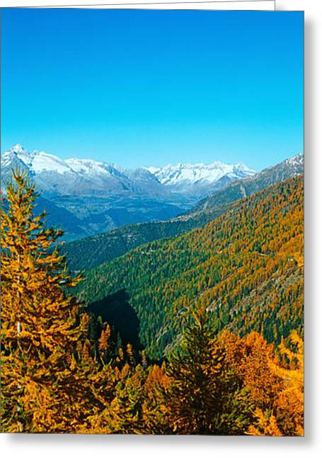 Days Pass Greeting Cards - Trees In Autumn At Simplon Pass, Valais Greeting Card by Panoramic Images