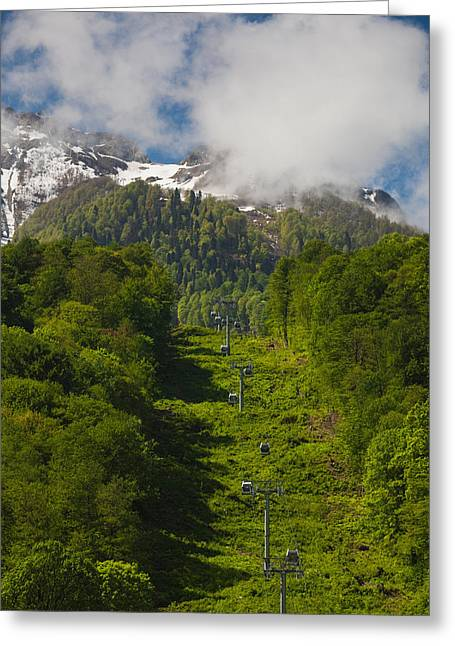 World Locations Greeting Cards - Trees In Mountain Landscape, Carousel Greeting Card by Panoramic Images