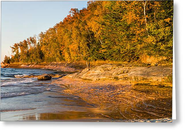Beach Photography Greeting Cards - Trees On The Beach, Miners Beach Greeting Card by Panoramic Images