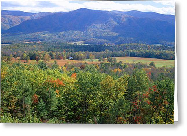 Smoky Greeting Cards - Trees With Mountain Range Greeting Card by Panoramic Images