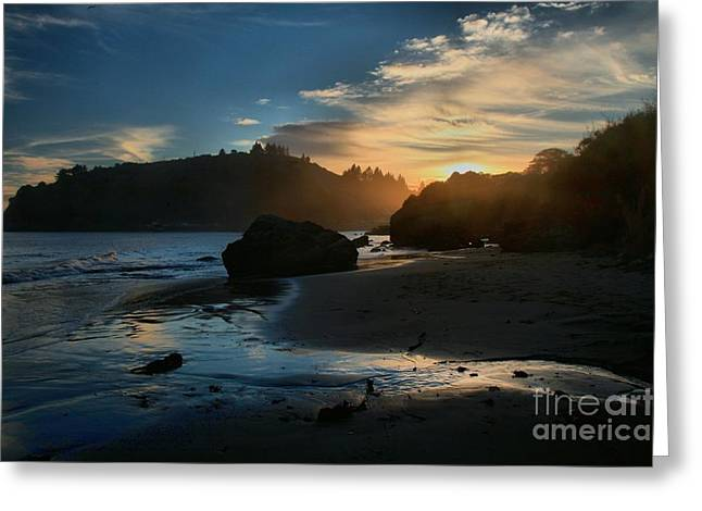 Foggy Beach Greeting Cards - Trinidad Beach Sunset Greeting Card by Adam Jewell