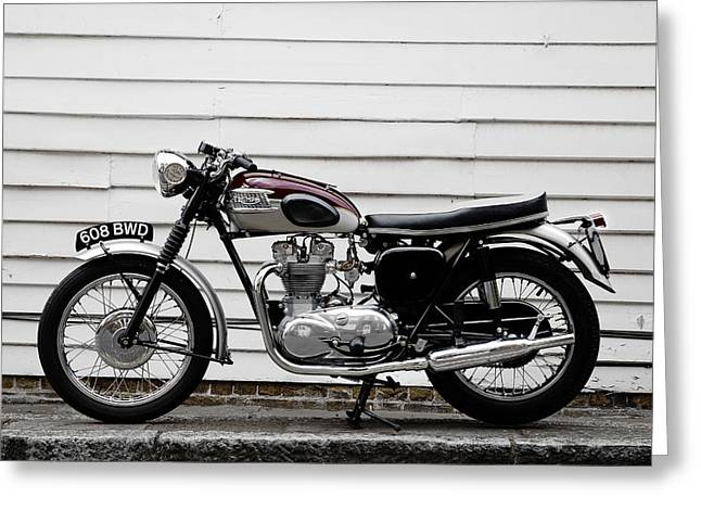 Motorcycle Greeting Cards - Triumph Trophy TR6R 1961 Greeting Card by Mark Rogan