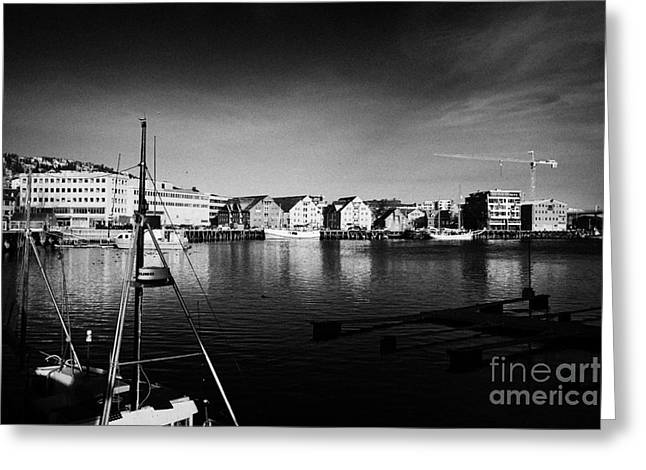 Scandanavian Greeting Cards - Tromso bryggen wharf old buildings harbour troms Norway europe Greeting Card by Joe Fox