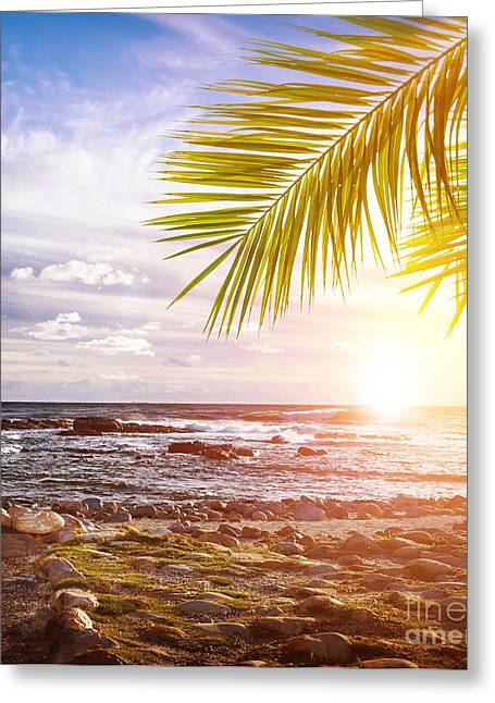 Panoramic Ocean Greeting Cards - Tropical beach Greeting Card by Anna Omelchenko