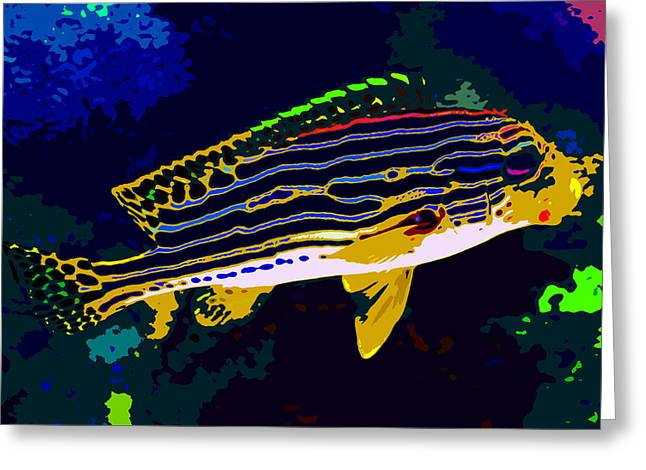 Reef Fish Greeting Cards - Tropical colors Greeting Card by David Lee Thompson