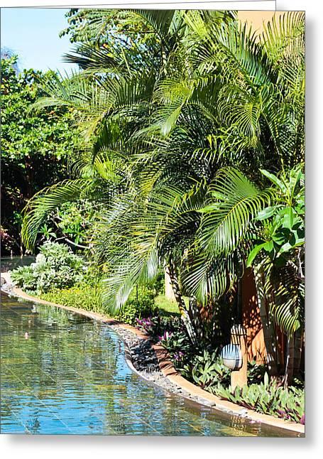Garden Scene Photographs Greeting Cards - Tropical garden Greeting Card by Tom Gowanlock