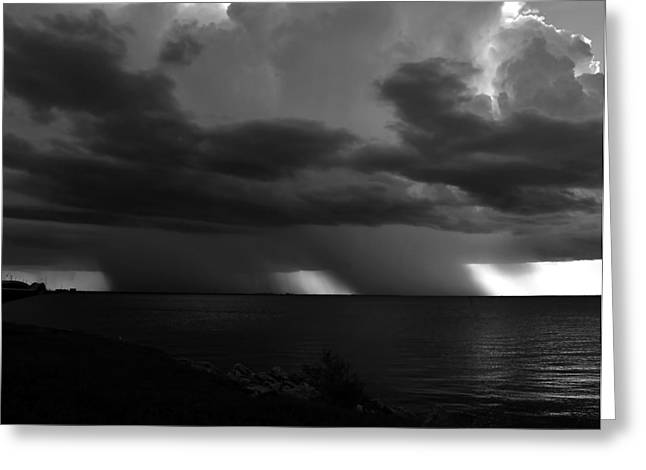 Summer Storm Greeting Cards - Tropical twins Greeting Card by David Lee Thompson