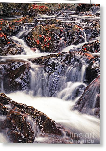 New Hampshire Leaves Greeting Cards - Trues Brook Gorge Water Fall Greeting Card by Edward Fielding