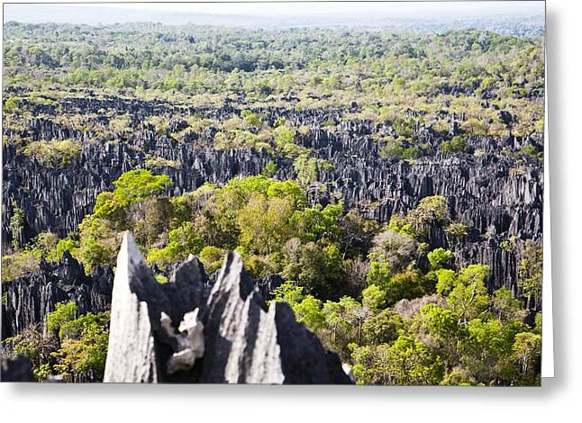 African Heritage Greeting Cards - Tsingy de Bemaraha, Madagascar Greeting Card by Science Photo Library