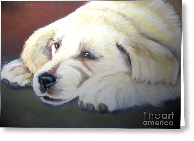 Puppies Pastels Greeting Cards - Tuckered Out Greeting Card by Amber Nissen