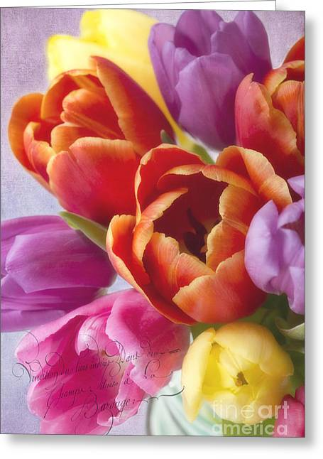 Cindi Ressler Greeting Cards - Tulips Greeting Card by Cindi Ressler