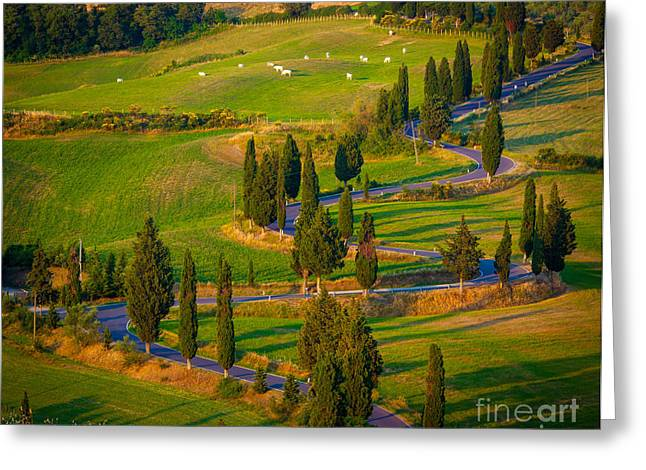 Europe Greeting Cards - Tuscan Road Greeting Card by Inge Johnsson