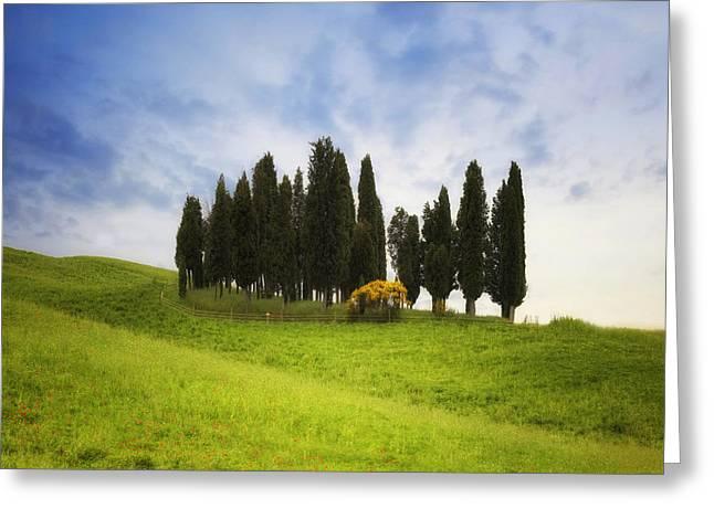 Montalcino Greeting Cards - Tuscany - Montalcino Greeting Card by Joana Kruse