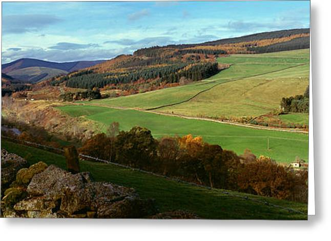 Border Photographs Greeting Cards - Tweed Valley By Thornilee Plantation Greeting Card by Panoramic Images