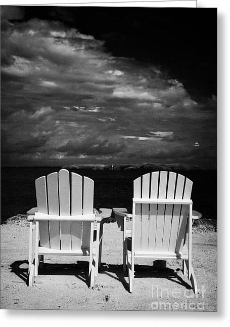Recliner Greeting Cards - Two Empty Sun Loungers On Private Beach Islamorada Florida Keys Usa Greeting Card by Joe Fox