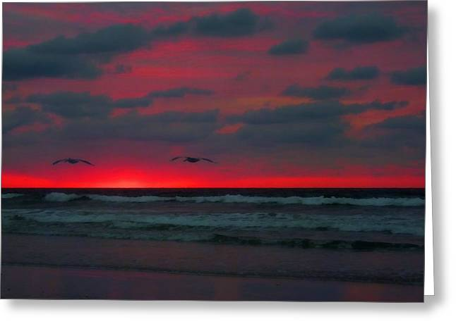 Wrightsville Beach Greeting Cards - Two Ship Greeting Card by JC Findley