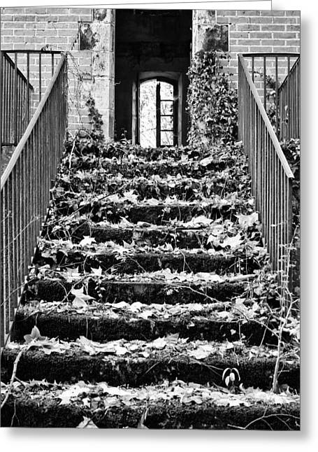 Abandoned Houses Greeting Cards - Up to the light Greeting Card by Nomad Art And  Design