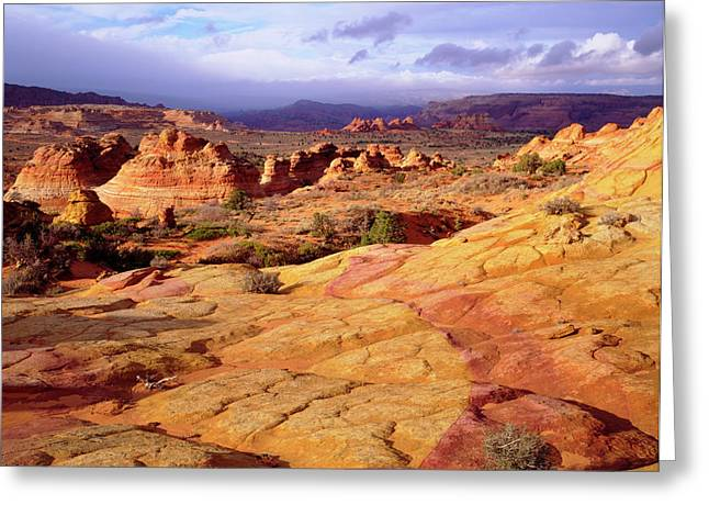 Usa, Arizona, Paria Canyon (large Greeting Card by Jaynes Gallery