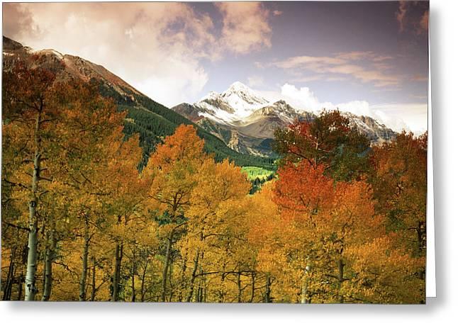 Usa, Colorado, San Juan National Greeting Card by Stuart Westmorland