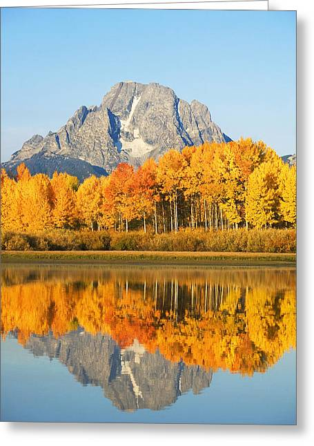 Glassy Lake Surface Greeting Cards - Usa, Grand Teton National Park Wyoming Greeting Card by Ron Dahlquist