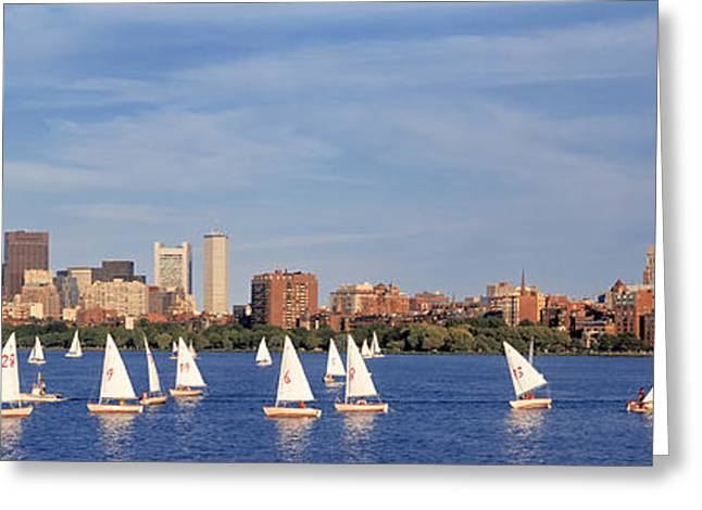 Sailboat Images Greeting Cards - Usa, Massachusetts, Boston, Charles Greeting Card by Panoramic Images