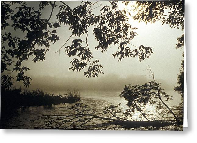Grey Clouds Greeting Cards - Ussuri Territory The Ussuri River Greeting Card by Anonymous