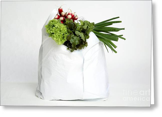 Shopping Bag Greeting Cards - Vegetables In A Plastic Bag Greeting Card by Victor de Schwanberg