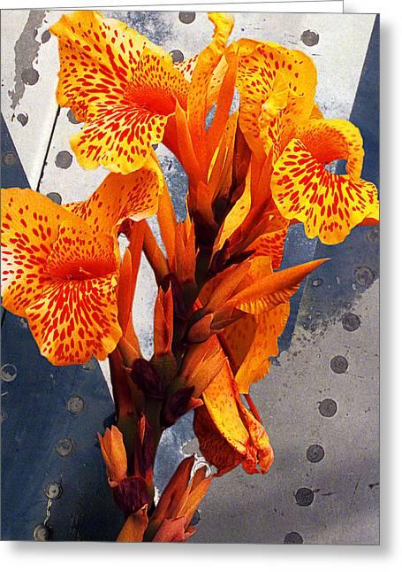 Metal Sheet Greeting Cards - Ventura Flower Greeting Card by Ron Regalado