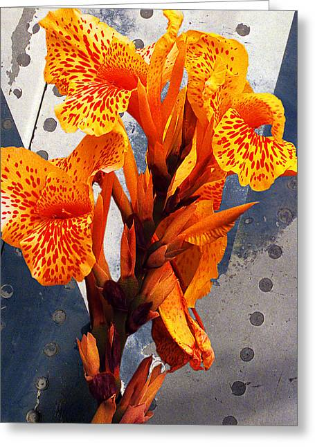 Ventura California Greeting Cards - Ventura Flower Greeting Card by Ron Regalado