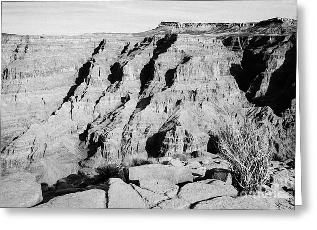 Guano Greeting Cards - view of the grand canyon from guano point Grand Canyon west arizona usa Greeting Card by Joe Fox