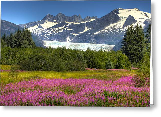 Hdr Landscape Greeting Cards - View Of The Mendenhall Glacier With A Greeting Card by Michael Criss