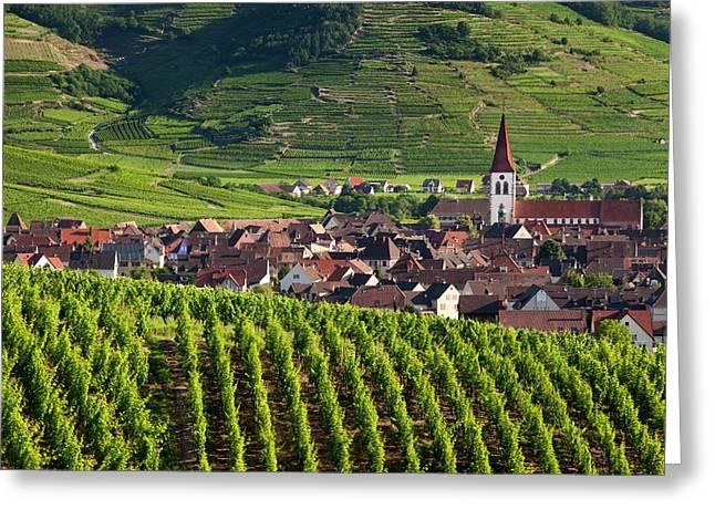 Village Of Ammerschwihr Surrounded Greeting Card by Brian Jannsen