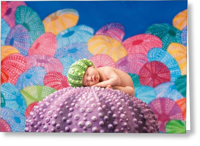 Babies Greeting Cards - Vince as a Sea Urchin Greeting Card by Anne Geddes